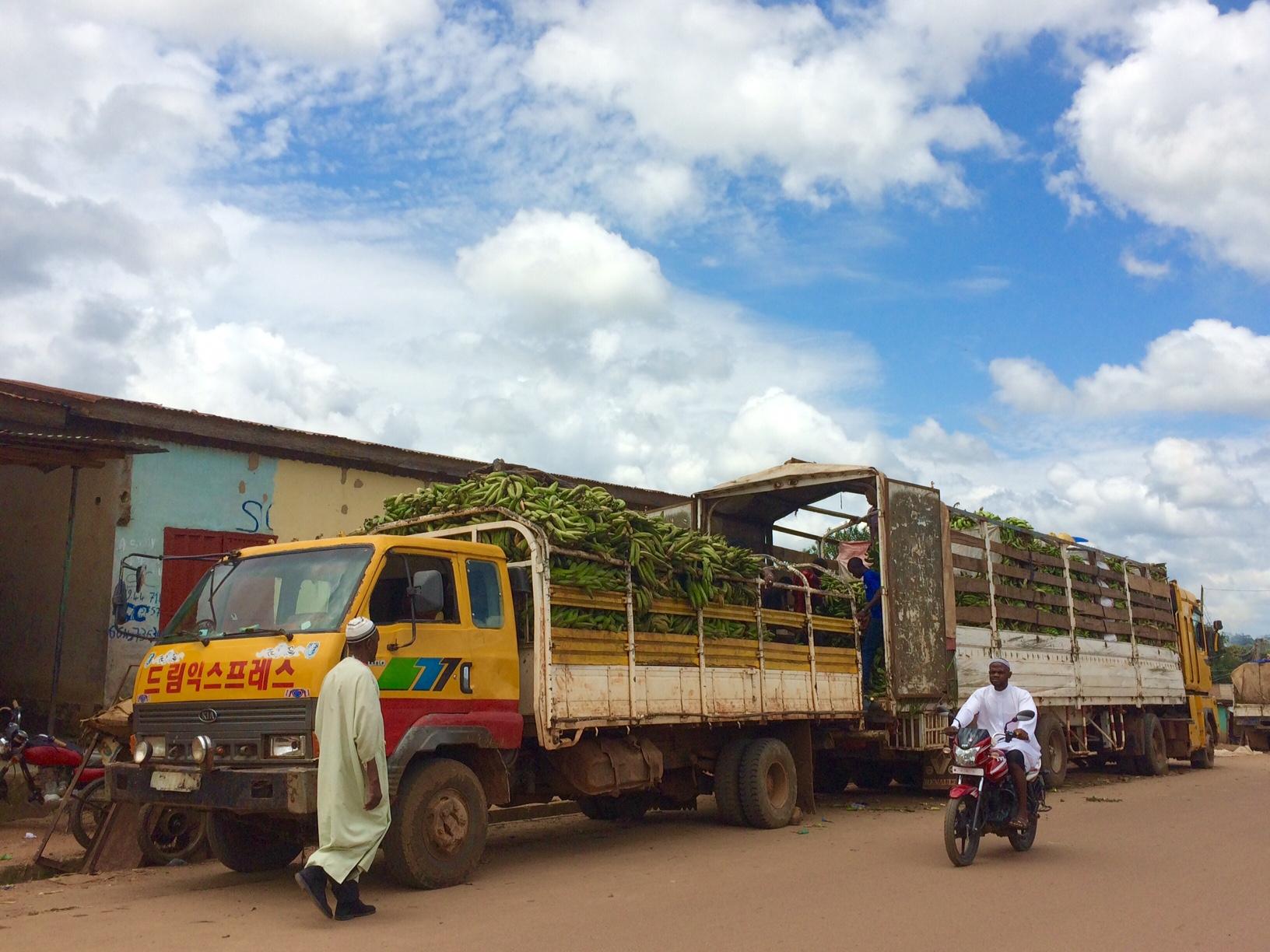 Dagelijks Leven Guinee