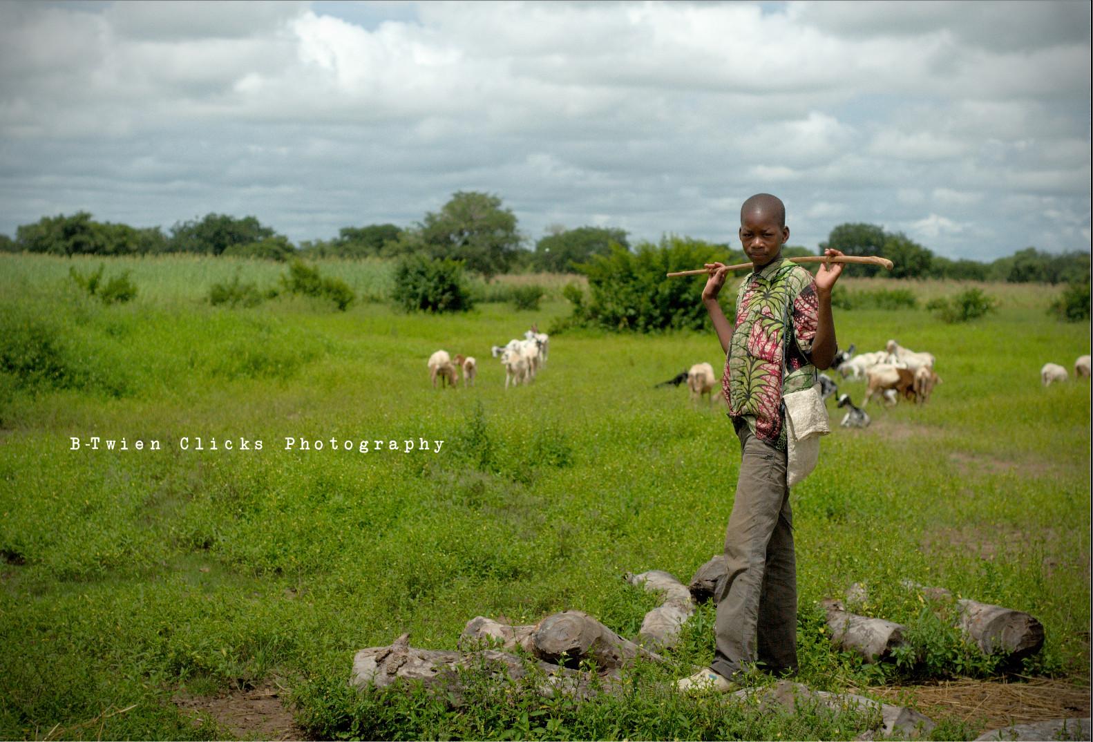 Geiten Hoeder Mali