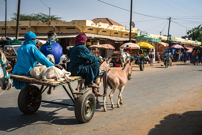 Herders Onderweg