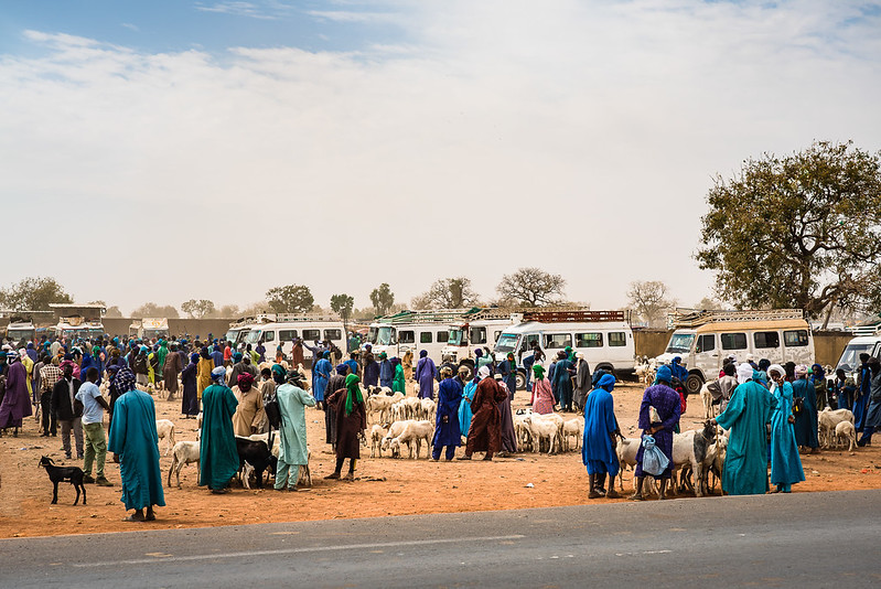 Fulani veemarkt